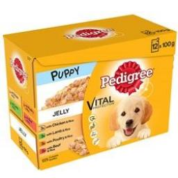 Pedigree Puppy Pouch Jelly Dog Food 12 x 100g
