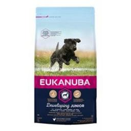 Eukanuba Developing Junior Large Breed Chicken