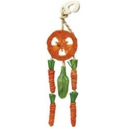 Boredom Breaker Carrot Dream Catcher
