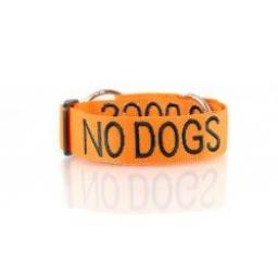 "Friendly Dog Collars ""No Dogs"" Dog Collar"