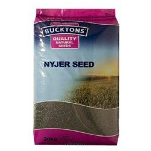 Buckton Nyger Seed from