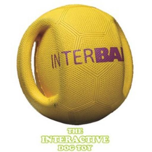 Pet Brands Interactive Interball Dog Toy.