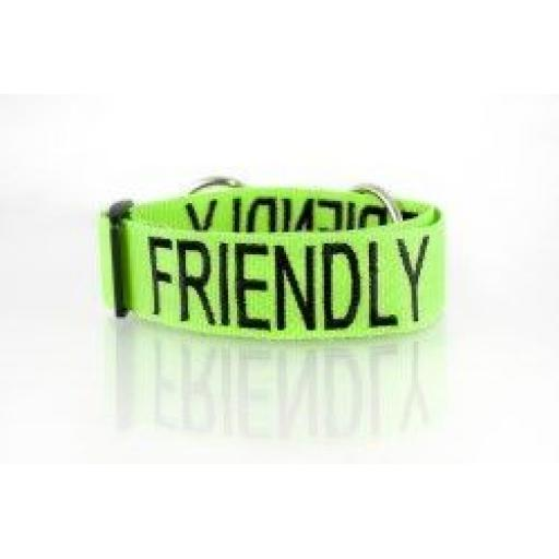 "Friendly Dog Collars ""Friendly"" Dog Collar"