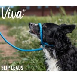 slip lead2.jpg