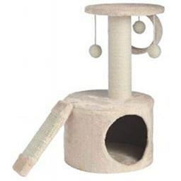 cat post.jpg